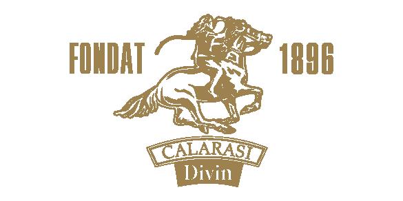 Logo_c_g-26